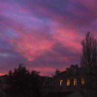 Закат отражался и окна горели... :: Veyla Vulpes