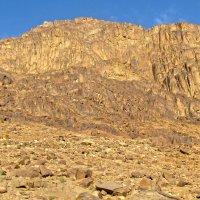Гора Моисея. :: Elena Izotova