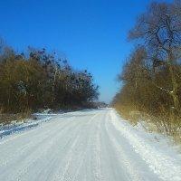 Зимний пейзаж !!! :: Татьяна ❧