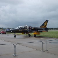 Чехословацкий учебно-боевой самолет L-39 Альбатрос :: Andrew