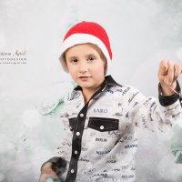 Merry Christmas :: Tatjana Agrici