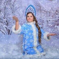 зима. :: Наталья Малкина