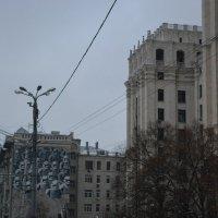 234 :: Nastasia Nikitina