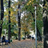 Осень :: Галина Литвинова