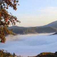 Берег тумана :: Сергей Чиняев