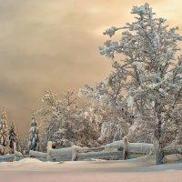 Зимний вечер :: Владимир Чуприков