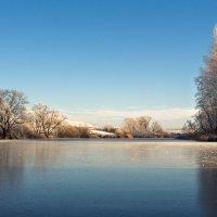 Мгновение зимы :: Valentina Radygnay
