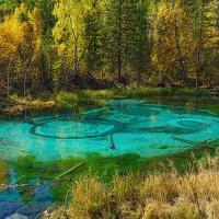 Гейзерное озеро :: Александр Потапов