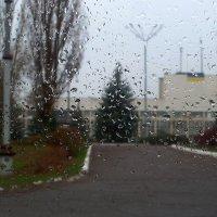 Дождь в декабре... :: Сергей Петров