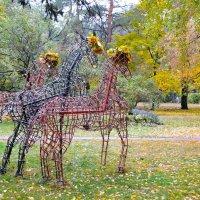Оказывается, лошади, как и деревья, сбрасывают осенью одёжки! :-)) :: Валентина Данилова