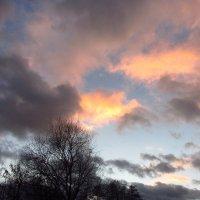 Небо в декабре (тема с вариациями) :: Андрей Лукьянов