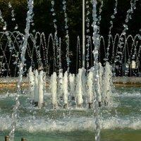 Водяные бриллианты :: Вера Щукина