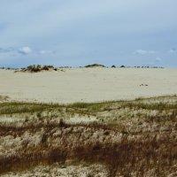 Волны в дюнах :: Максим Воробьев