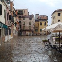 Непарадная Венеция :: Плюшевая Пальма