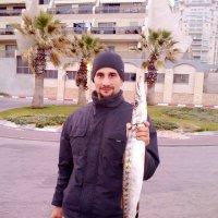 морская щука :: Ефим Журбин