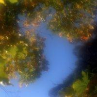 Осень через МОНОКЛЬ 50 mm................... :: Валерия  Полещикова