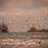 Рыбаки :: Алексей Яковлев