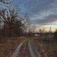В  деревню... :: Валера39 Василевский.