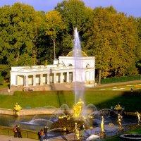 Осень в Нижнем парке Петергофа. :: Лия ☼