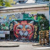 graffiti :: Марк Додонов