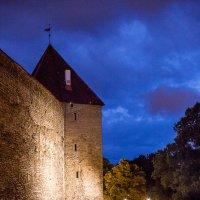 Ночной Таллин. Лето 2015г :: Наталья Вендт Фотограф&Дизайнер