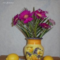Лимоны и герберы :: Nina Yudicheva