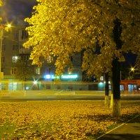 Ночной Измаил. Осень 2015 :: Жанна Романова