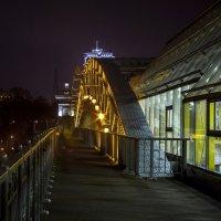 Андреевский мост :: Евгения Ки