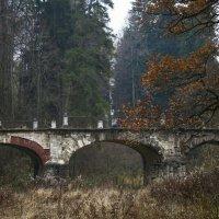Чертов мост, Середниково :: Евгения Ки