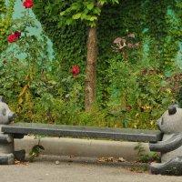 Скамейка в парке :: Георгий Калиберда