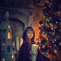 В мире сказок :: Светлана Торгашева