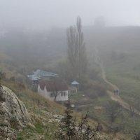 Уходящие в туман :: Игорь Кузьмин