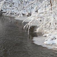 Зимушка зима :: Виталий Макаров