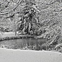 Падает снег :: Alexander