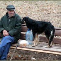 Жизнь прошла... :: Андрей Заломленков