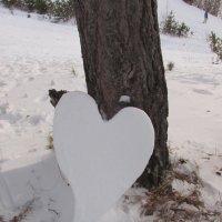 Снежное сердце :: Валерий A.