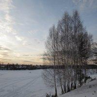 Штанговый пруд зимой :: Валерий A.