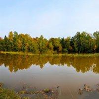 Осенний пейзаж. :: Юрий Бичеров