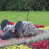 Мышка на клумбе :: Вера Щукина