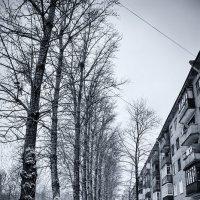 Под белым небом декабря :: Игорь Герман