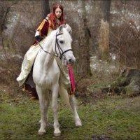 Укрощение (Зимние сказки волшебного леса) :: Igor Veter