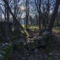 В старом парке :: Игорь Кузьмин