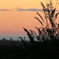 закат на море :: Tasha