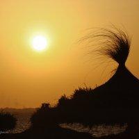 Тунис. Закат :: Жанна Рафикова