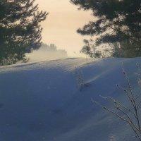 Вокруг снега сверкают голубые. :: Павлова Татьяна Павлова