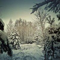 Добро пожаловать в Зиму ... :: ВладиМер