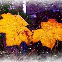 Зима нипочём, если греет любовь :: Nina Yudicheva