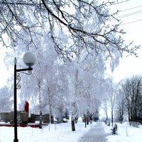 Зима в парке :: Наталья Д