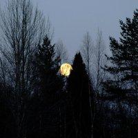 Луна, луна. :: Андрей Скорняков