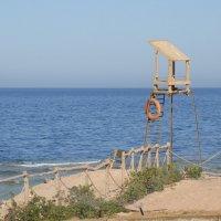 Красное море... совсем не красное :: Жанна Рафикова